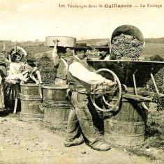 Gaillac_Foulage