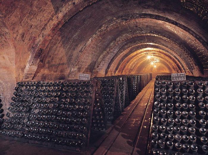 interior-de-les-caves-codorniu