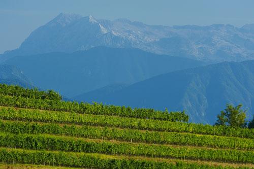 Friuli02