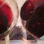 Five Red Valais Wines to Enjoy 'Après Ski'