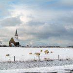 Een dagje Texel: wijn, bier, lam, kaas en zeewier