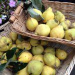 Tips voor dessertwijnen: Rivesaltes Ambré bij gepocheerde kweeperen