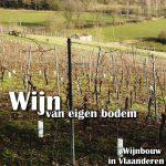 Wijn van Belgische bodem