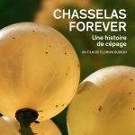 A Year in Port en Chasselas Forever: twee wijnfilms met veel historie