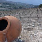 Cyprus, eiland met een eeuwenoude wijncultuur