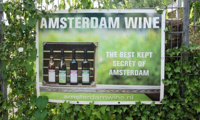 Discover Dutch Wine at the Holland Wine Center