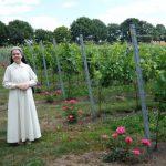Nieuwe initiatieven in de Nederlandse wijnbouw: Sint Catharinadal en De Belaeving