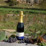 Mousserende wijnen uit Limburg gekeurd