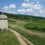 Wandelen net buiten Wenen: een bezoekje aan de Thermenregion