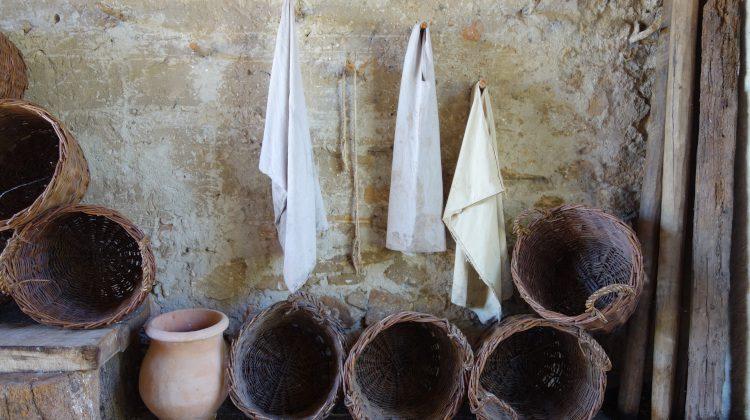 De Romeinse Rhône #3: Wijnbouw in de coloniae