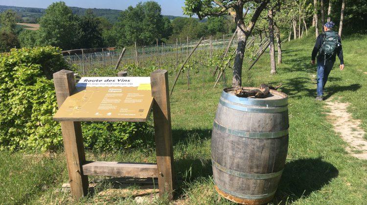 Genieten van de eerste Limburgse Route des Vins