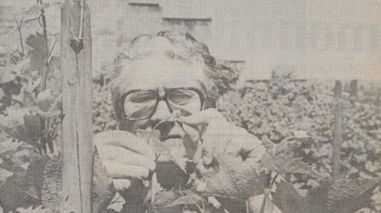 Frits Bosch en Slavante – 50 jaar wijn van eigen bodem